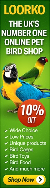 Loorko.com Pet Bird Store